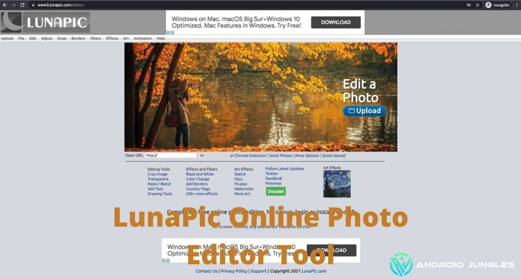 LunaPic Free Online Photo Editor- In detail Guide.